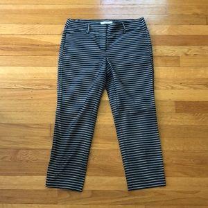 Loft Marisa Strip dress pants